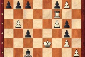 Ergebnisse vom Schach