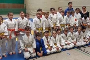 33 Nachwuchs-Judoka legen Prüfung zum nächst höheren Kyu-Grad ab