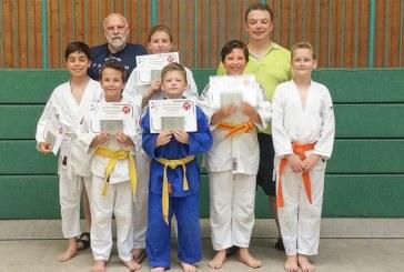 Erfolgreiche Prüfung für Jiu Jitsu-Talente beim Judo Club Holzwickede