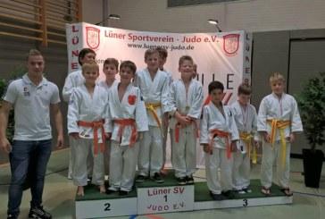 13 Kreismeister-Medaillen in der U10 und U13 gehen an den JC Holzwickede