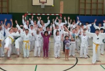 VfL-Taekwondo bietet neuen Anfängerkurs für Kinder an