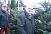 Weihnachtswald auf dem Haarstrang: HSC verkauft Tannenbäume