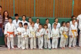 Erfolgreiche Judo-Sommerprüfung 2018 für Nachwuchskämpfer