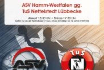 Am 27. Juli Spitzenhandball in Bergkamen: ASV Hamm-Westfalen – TuS Nettelstedt Lübbecke