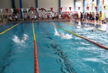 Wasserfreunde freuen sich auf ihr XLIV. Internationales Schwimmfest