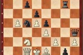 Schach-Ergebnisse vom Wochenende