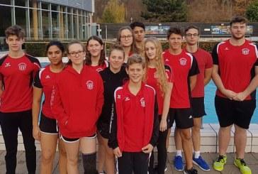 44 Medaillen für Wasserfreunde in Arnsberg