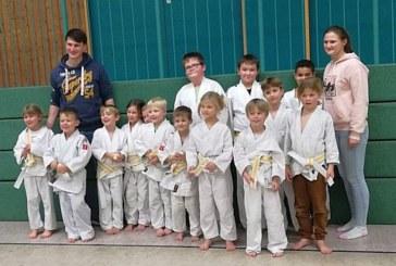 Erfolgreiche Judo Prüfung beim Judo Club Holzwickede