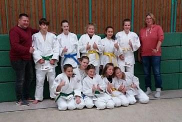Neue Gürtel für Nachwuchsjudoka des Judo Club Holzwickede